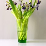 Fotografie verblühtes Blumenstillleben violette Tulpen in grüner Vase