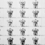 pencil on paper, repetition, running dogs