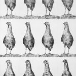 pencil on paper, small format, repetition, birds