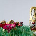 Fotografie, Schokolade, Stillleben, Humor