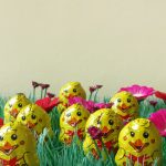 photographs, conceptual art, chocolate, humor, easter chicken in plastic grass